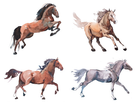 Watercolor painting of galloping horse, free running mustang aquarelle Imagens - 74889327