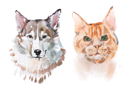 redheaded: Watercolor painting, red-headed cat and dog aquarelle drawing.