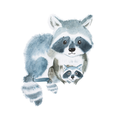 Cute fuzzy raccoon family, mother warming her little baby. Artwork created with watercolor technique.
