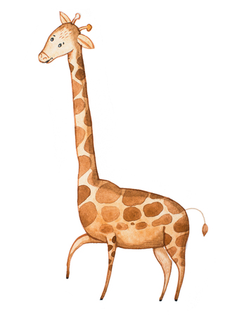 Watercolor illustration of funny cartoon giraffe drawn on paper Imagens