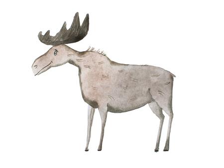 Aquarelle illustration of smiling moose or elk on white background
