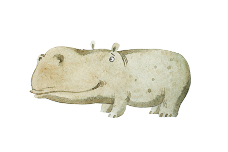 Watercolor kids book Illustration of cute baby hippo hand drawn.