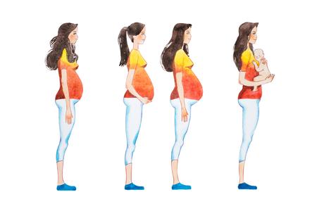 Beeldverhaalillustratie van zwangerschapstadia. Zijaanzichtbeeld van zwangere vrouw die veranderingen in haar lichaam tonen