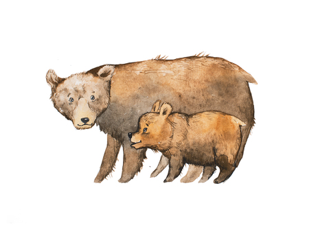 Brown bear with a baby drawn with watercolor technique Stock Photo