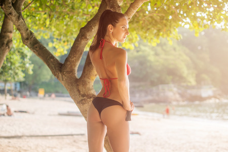 Rear view of sexy young woman in perfect shape wearing bikini standing near the tree on sandy beach with blurred background