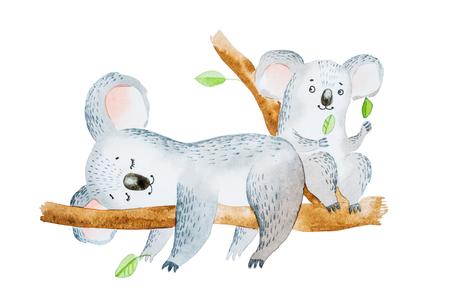 2 つのかわいい漫画コアラはユーカリの木の枝の上に座っての水彩イラスト