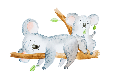 Watercolor illustration of two adorable cartoon koala bears sitting on eucalyptus tree branch Stock Photo