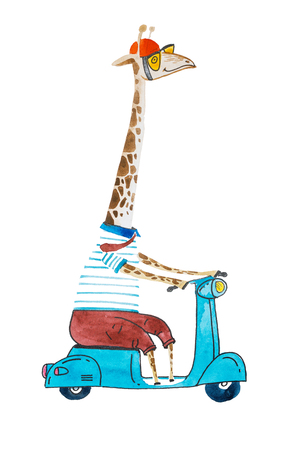 Watercolor cartoon giraffe dressed up in t-shit and trousers wearing helmet and sunglasses riding a scooter Stok Fotoğraf - 84276228