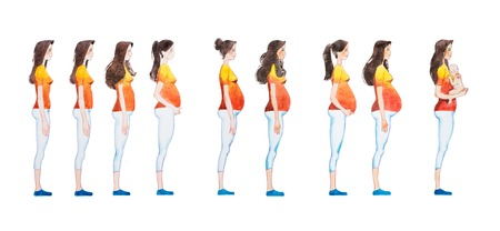 Cartoon illustration of pregnancy stages. Side view image of pregnant woman showing changes in her body