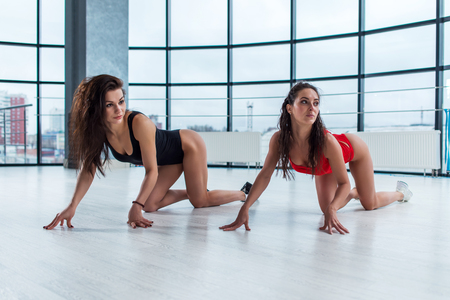 Two attractive young women wearing bodysuits doing cat stretch standing on all fours looking away from camera during photoshoot in loft apartment. Banque d'images