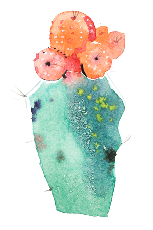 Watercolor hand drawn spiky cactus bloom flower. Imagens - 101659843