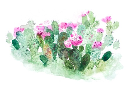 Watercolor hand drawn spiky cactus bloom flower