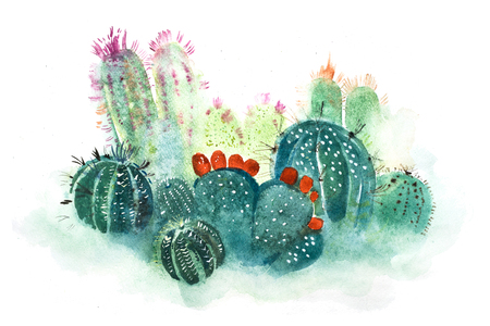 Watercolor hand drawn spiky cactus bloom flower.