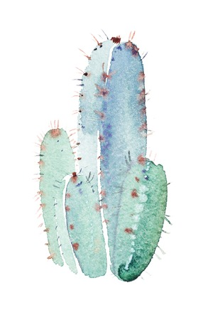 Watercolor hand drawn spiky cactus bloom flower Imagens - 102321597