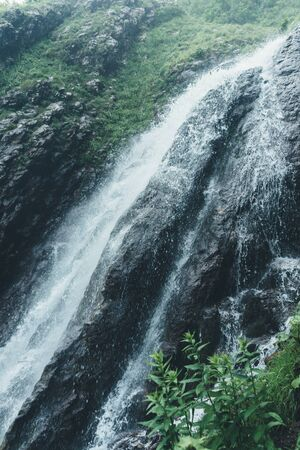 Waterfall in the forest, natural landscape picturesque scenery