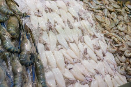 Fresh squid on the market for sale. White raw squid seafood Stock Photo