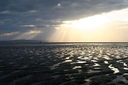 aotearoa: Low tide on the Firth of Thames, Coromandel Peninsula, New Zealand
