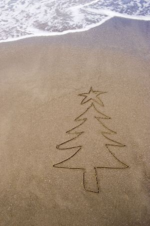 christmas tide: Christmas tree in the sand. A summer Christmas in the Southern Hemisphere.