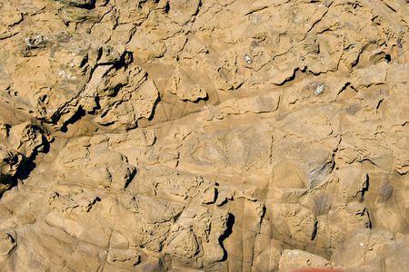 aotearoa: texture of a boulder at the beach