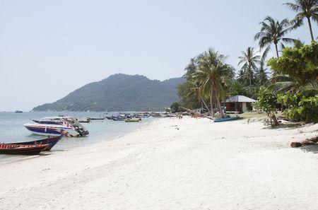 koh: Koh Tao, Turtle Island, Tailandia