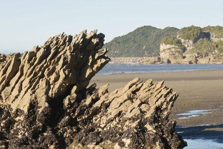 nelson: A mussel laden rock at Golden Bay, Nelson, New Zealand