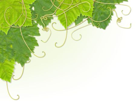 Grape leaves composite design to make up a corner decoration