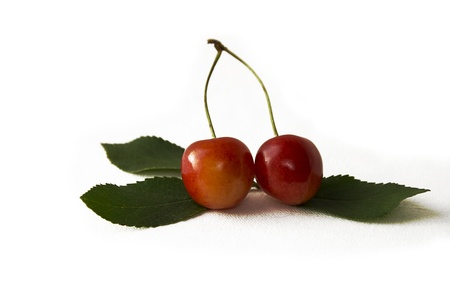Yellow-red sweet cherry with leaves.