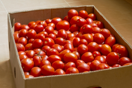 tomatoes in a box Stock Photo