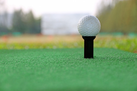 confine: Closed up golf ball on tee