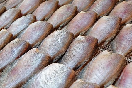 Stack of dried Skin Gourami Fish (Pla salit fish or Sepat siam) in Thailand local fish market