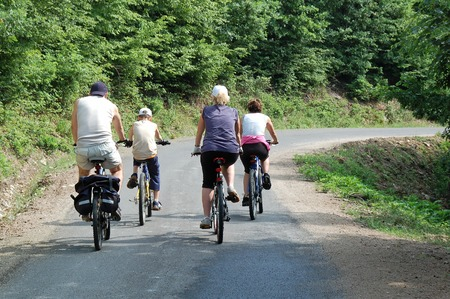 A group of people riding their bikes in the forest. photo