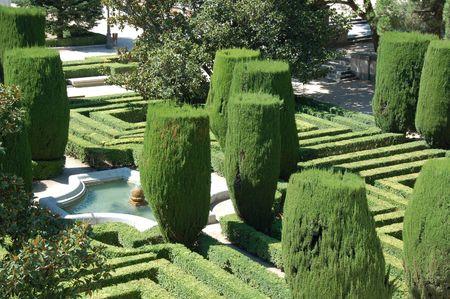 hedging: Garden of king in Madrid (Spain).