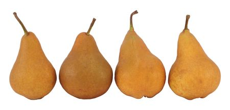 Four pears isolated on a white background. photo