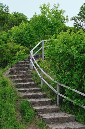 banisters: Stone stairs in the green forest with banisters. Stock Photo