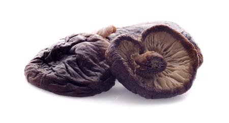 Gekookte champignons