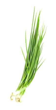 Gehakte groene uien op wit Stockfoto