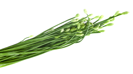Chinese chives flower on white background Foto de archivo