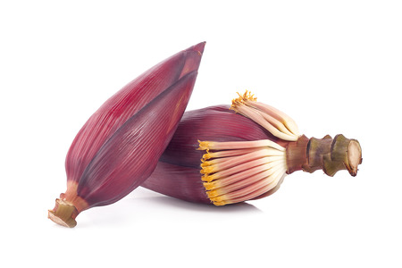 Banana blossom isolated on white background Banque d'images
