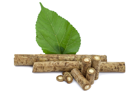 Burdock roots isolated white background
