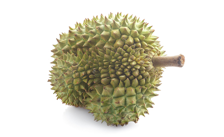Fresh durian on isolate white background. Durian is king of tropical fruit.