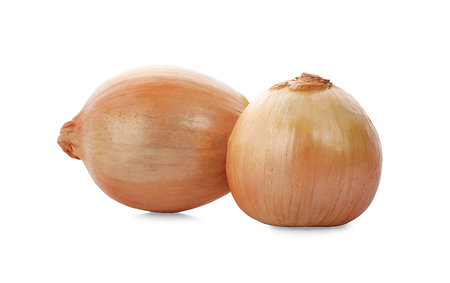 Fresh onion bulbs isolated on white background 写真素材