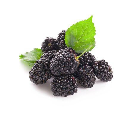 Blackberries isolated on white background 写真素材