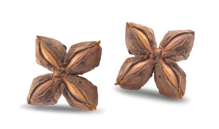 Nuts Incas , sacha inchi peanut seed on white background