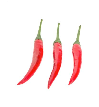 ed chili pepper an isolated on white background Stockfoto