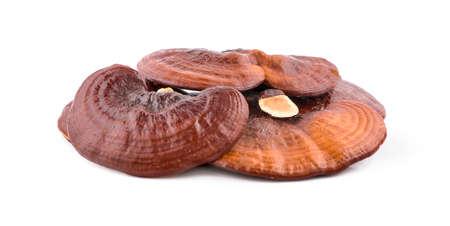 Dried Ganoderma Lucidum Mushroom isolated on white background.Ling Zhi Mushroom