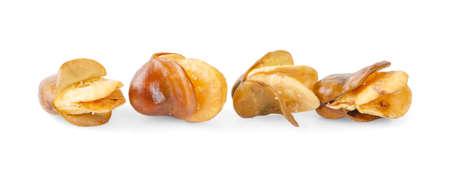 Broad bean, English Bean, European Bean, Field Bean. Fry (Vicia faba L.). on white background. Zdjęcie Seryjne