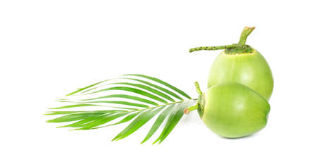 Green coconut Fruit isolated on white backgroun