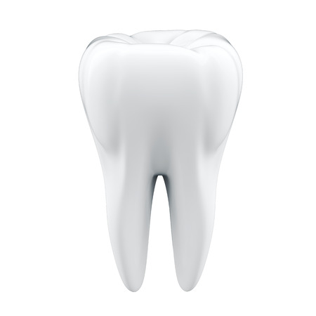 3D Tooth  photo