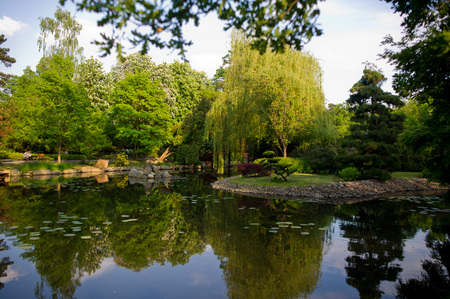 The pond with calm water. On the rocky shore of a variety of trees. They are reflected in the water