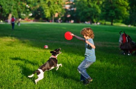 소년 개가 잔디밭에 재생됩니다. 소년은 프리즈 비를 들고 손을 올렸다. 그의 아름다운 근심스러운 강아지는 뒷다리 다리에 걸렸다. 그는 주인에게서
